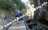 Sentiero dei tronchi (Itinerario dei tronchi) n°1 attraverso la Gola del Diavolo in direzione dello Sciliar (Foto: R. Jakubowski).
