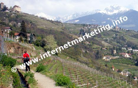Blick nach Dorf Tirol und Sarntaler Alpen vom Algunder Waalweg (Foto: B. Jakubowski).