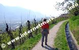 Wandern am Marlinger Waalweg (Foto: R. Jakubowski).