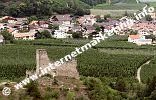 Burgruine Unterrmontani oberhalb der Ortschaft Morter im Vinschgau (Foto: R. Jakubowski).